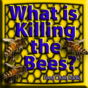 Michael Olson Food Chain Radio – Protecting the Pollinators Can we grow food with bees and pesticides?