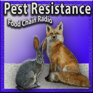 Michael Olson Food Chain Radio – Which do you think is the best way to resist threats: diversity or uniformity?