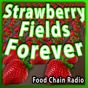 Michael Olson Food Chain Radio – Strawberries and Pesticides